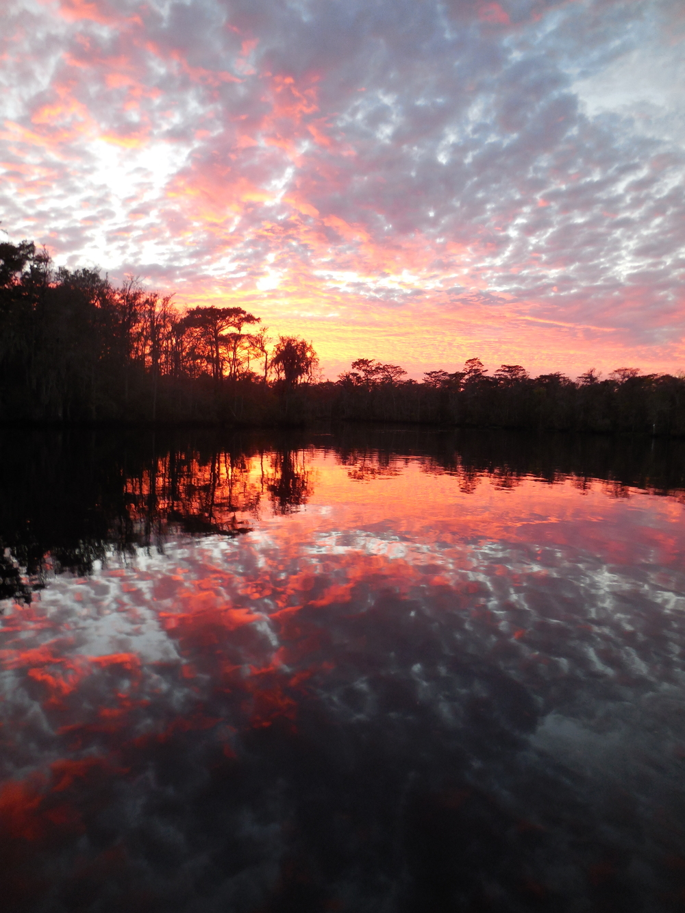 Waccamaw River sunset reflections.  You can turn the picture upside down and it is hard to tell what is the river and what is the sky.  Photo by Kim Carlson