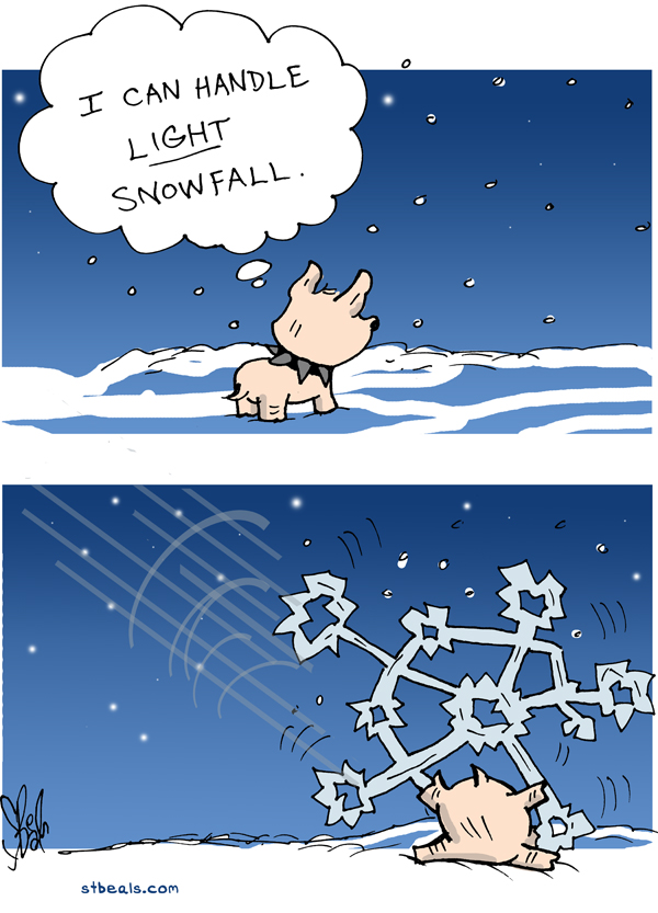 2013-12-06a-Snowfall.jpg