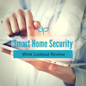 Wink Lookout Review — Angel Piontek