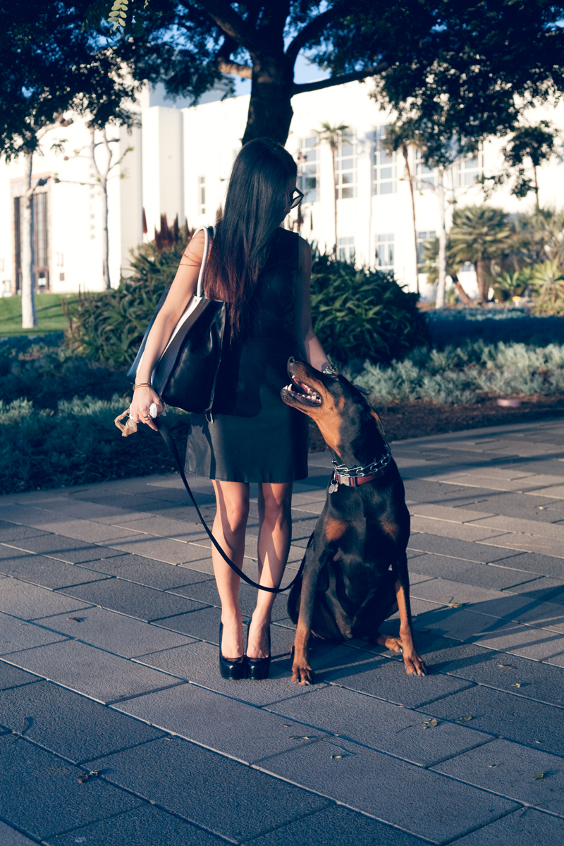 leatherdress_businesswoman_doglover_doberman.jpg