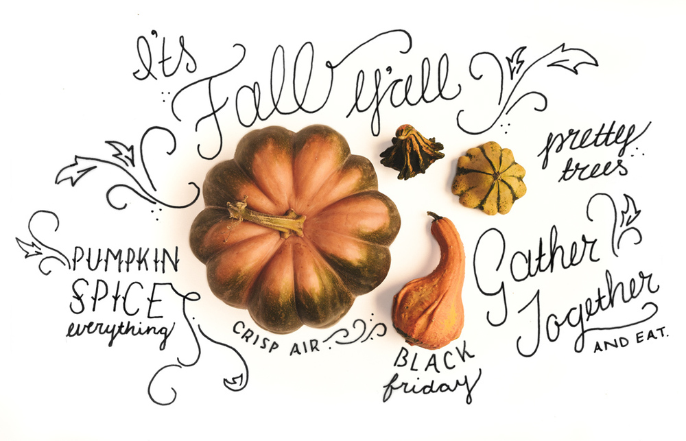 November Feature: It's Fall Y'all!