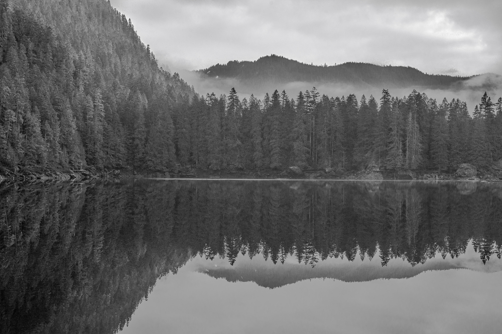 Lower Lena Lake. Olympic National Forest, Washington.