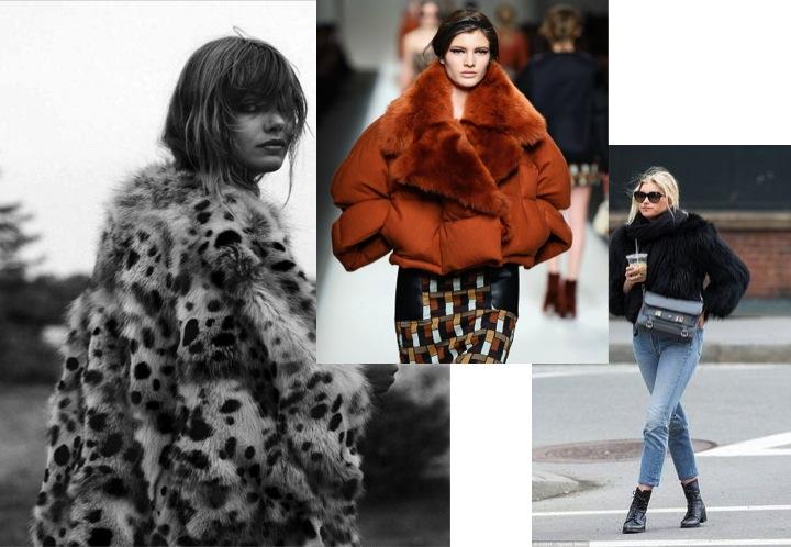 fluffy coats