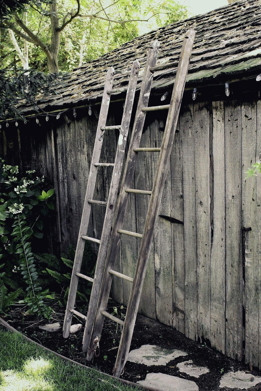 Ladders_1360x2040_01.jpg