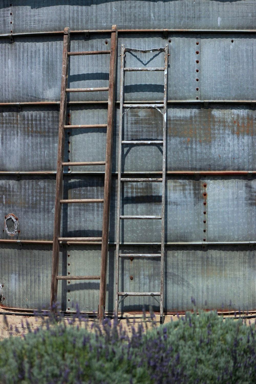 Vintage Wedding Rung Ladder Rental