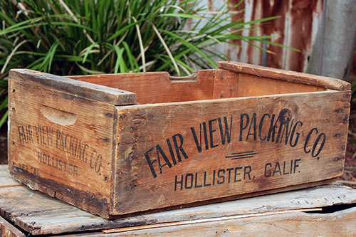 FAIR VIEW PACKING - $10