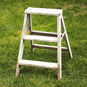 STEP LADDER - $5 MORE DETAILS & PICS...
