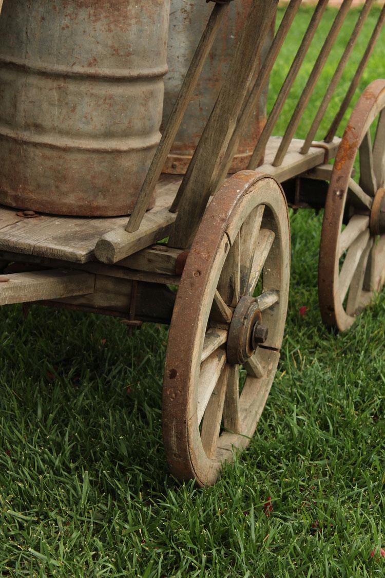 Goat-Cart-02.jpg