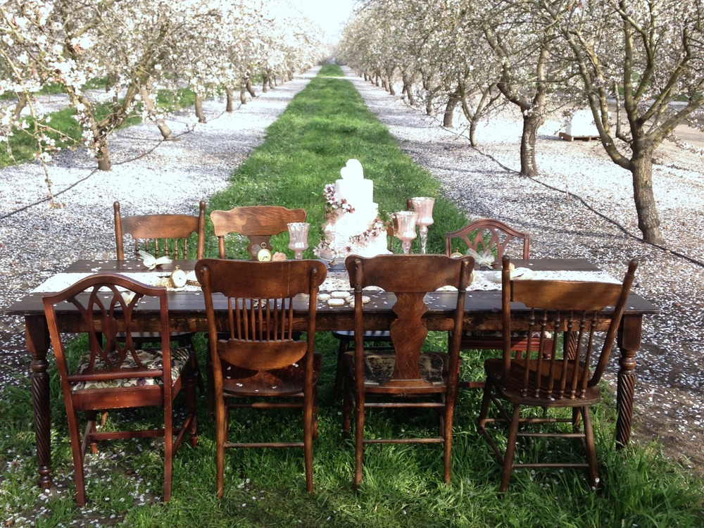Wedding Farm Table rentals
