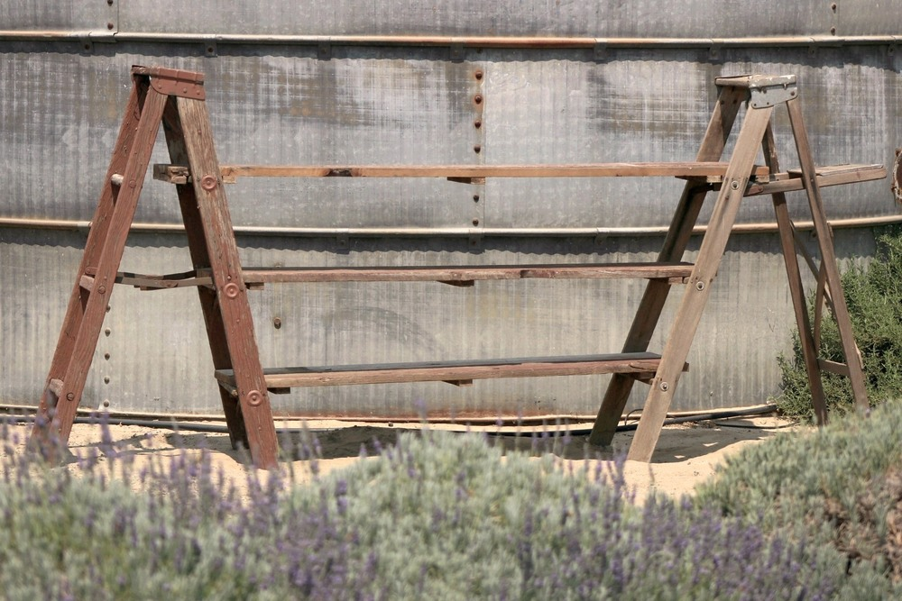Rustic Vintage Wedding Ladder Shelf Rental
