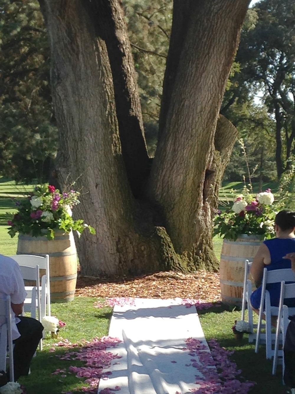 Wine Barrel and Oak Tree Altar.jpg