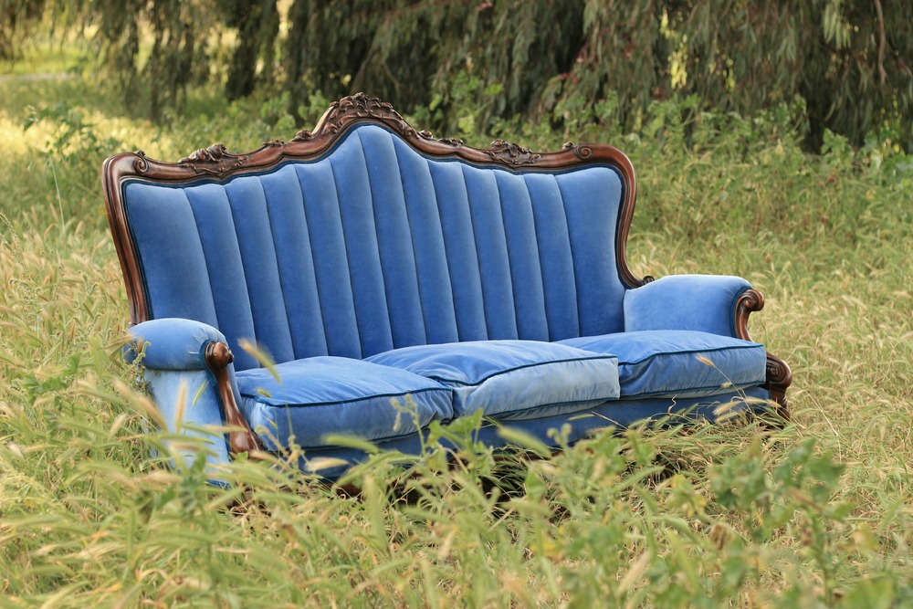 Mrs. Hughes Sofa in Grass.jpg