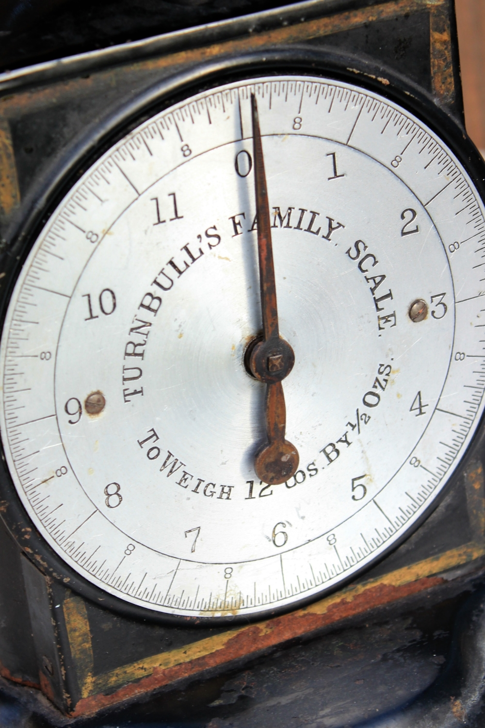 Turnbulls Scale Detail.jpg