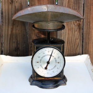 TURNBULL'S FAMILY SCALE - $20    MORE DETAILS & PICS...