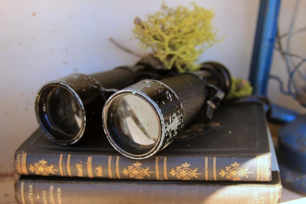 Field Binoculars.jpg