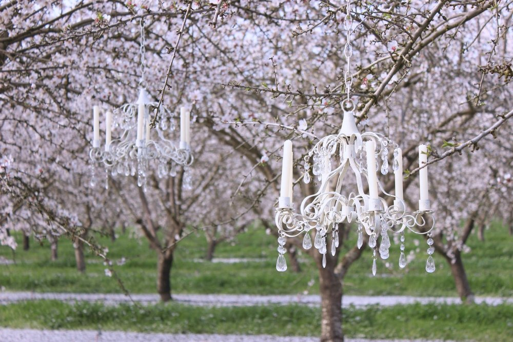 Almond Orchard Chandelier2-Edit.jpg