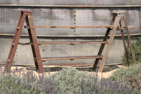 Ladder Shelf - $50 MORE DETAILS & PICS...