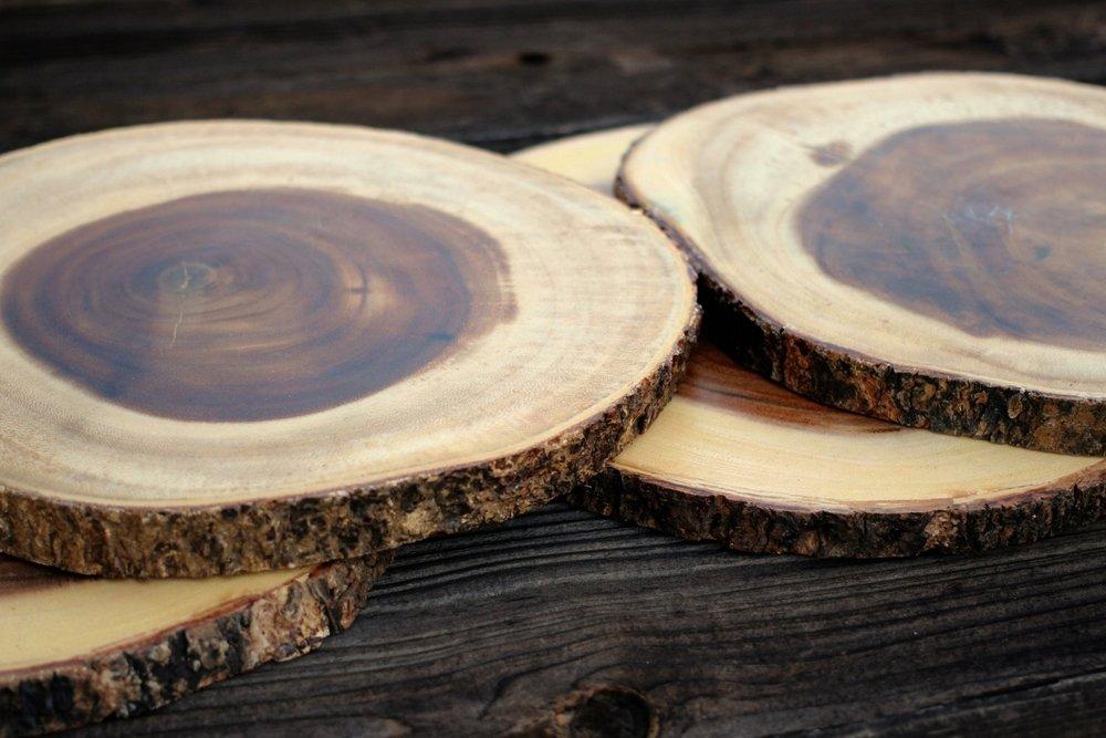 Wood Tree Slices