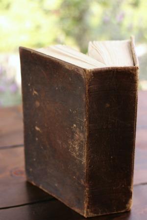 1837 Polyglott Bible-450x300.jpg