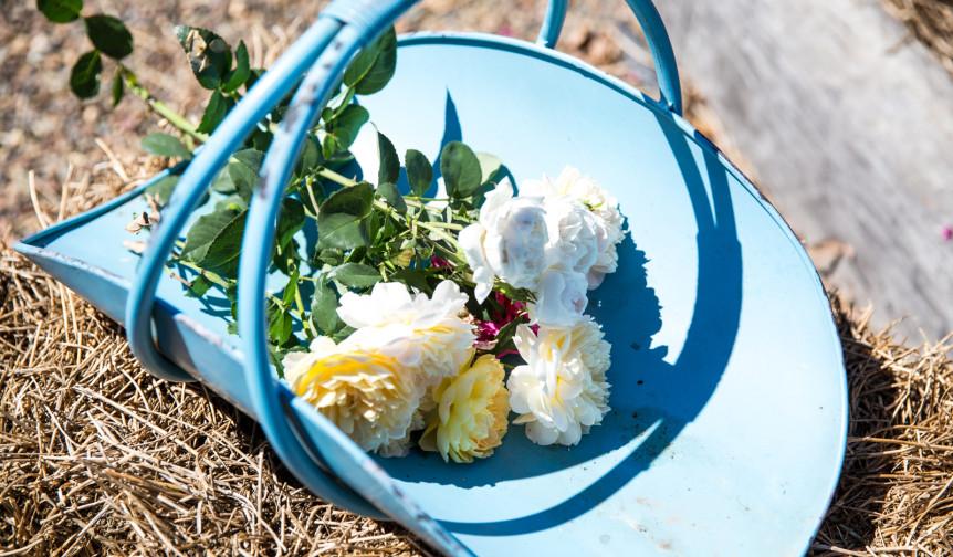 Mudgee-Made-Oh-Flora-4-862x504.jpg