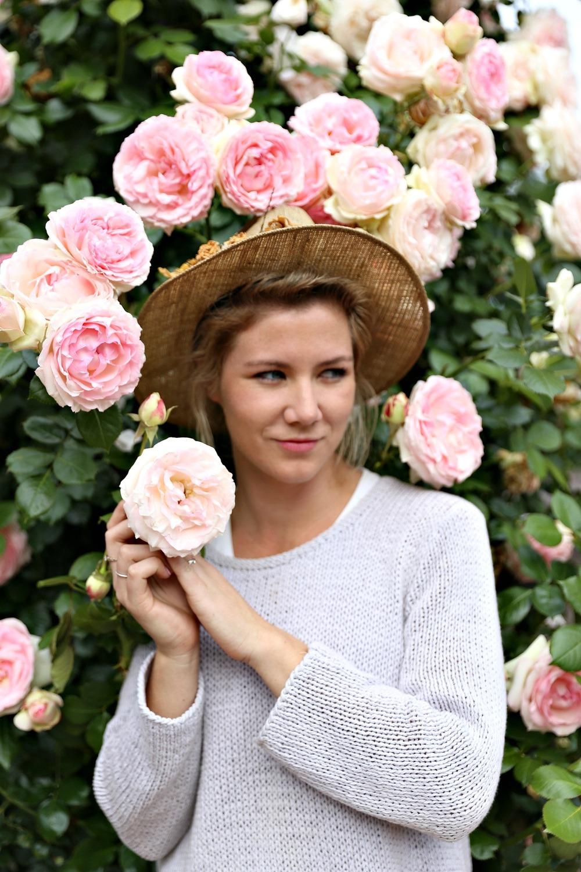 rosegarden6.jpg