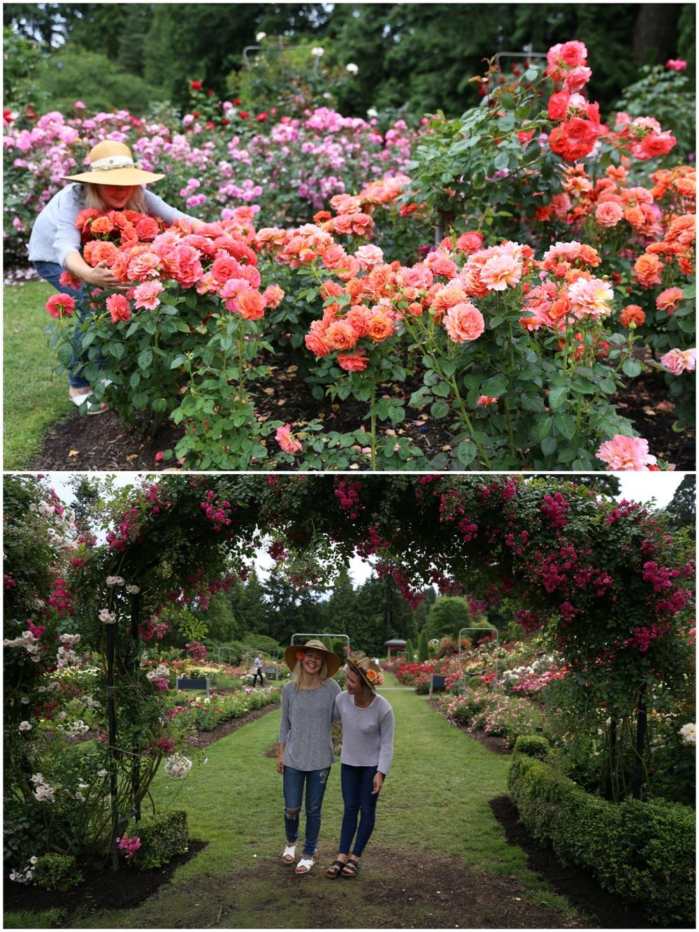 rosegardners5.jpg