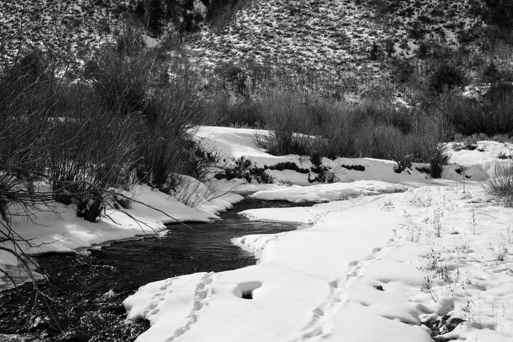 snowy creek 72.jpg