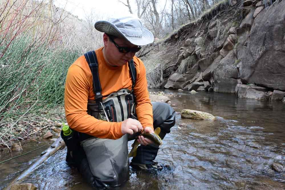 50-50 creek-3.jpg