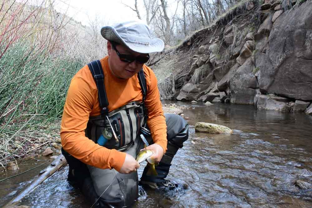 50-50 creek-2.jpg
