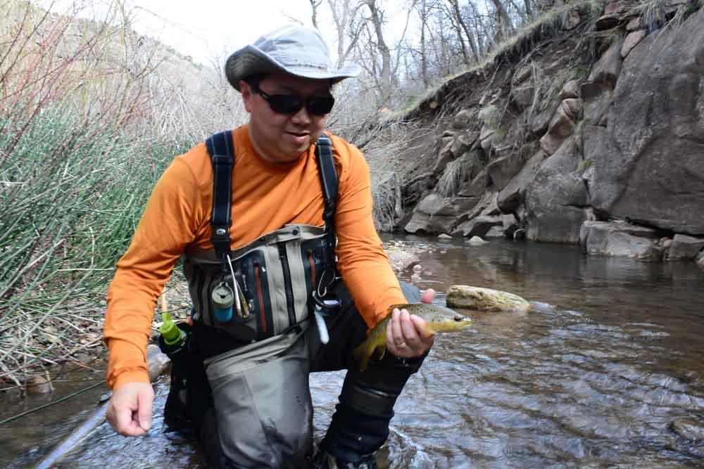 50-50 creek-5.jpg