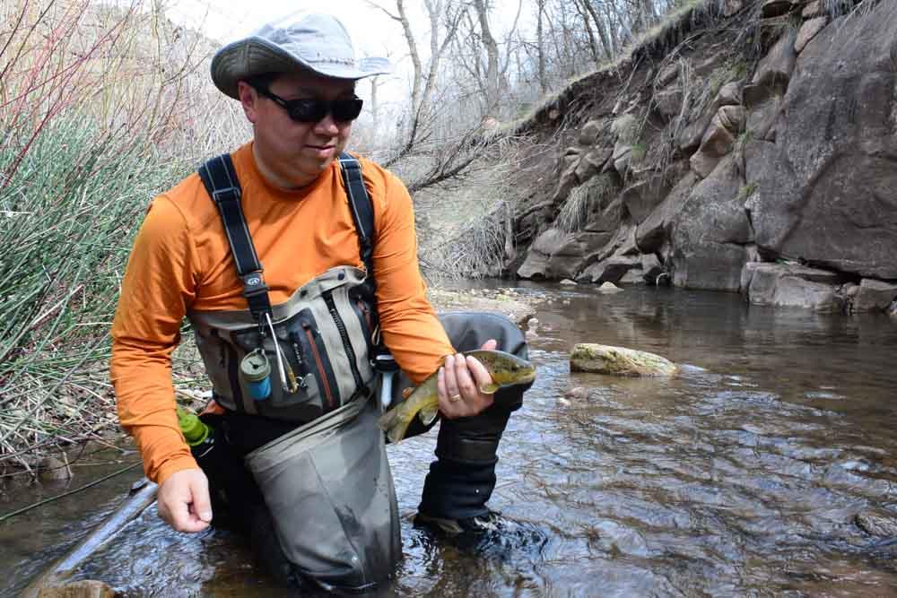 50-50 creek-4.jpg
