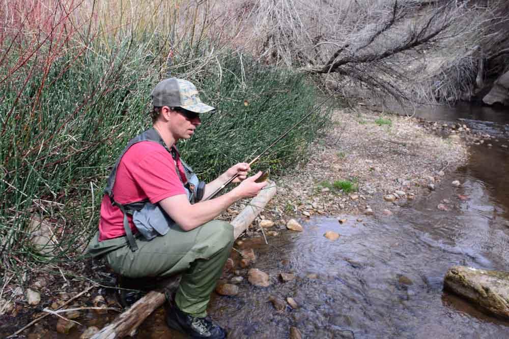 50-50 creek-6.jpg