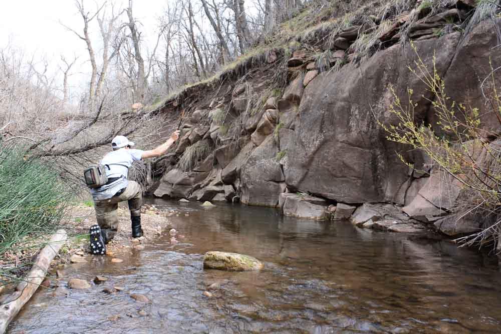 50-50 creek-10.jpg