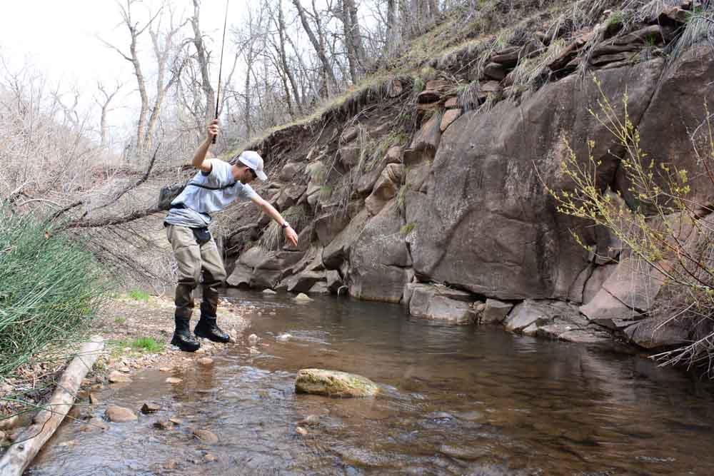 50-50 creek-12.jpg