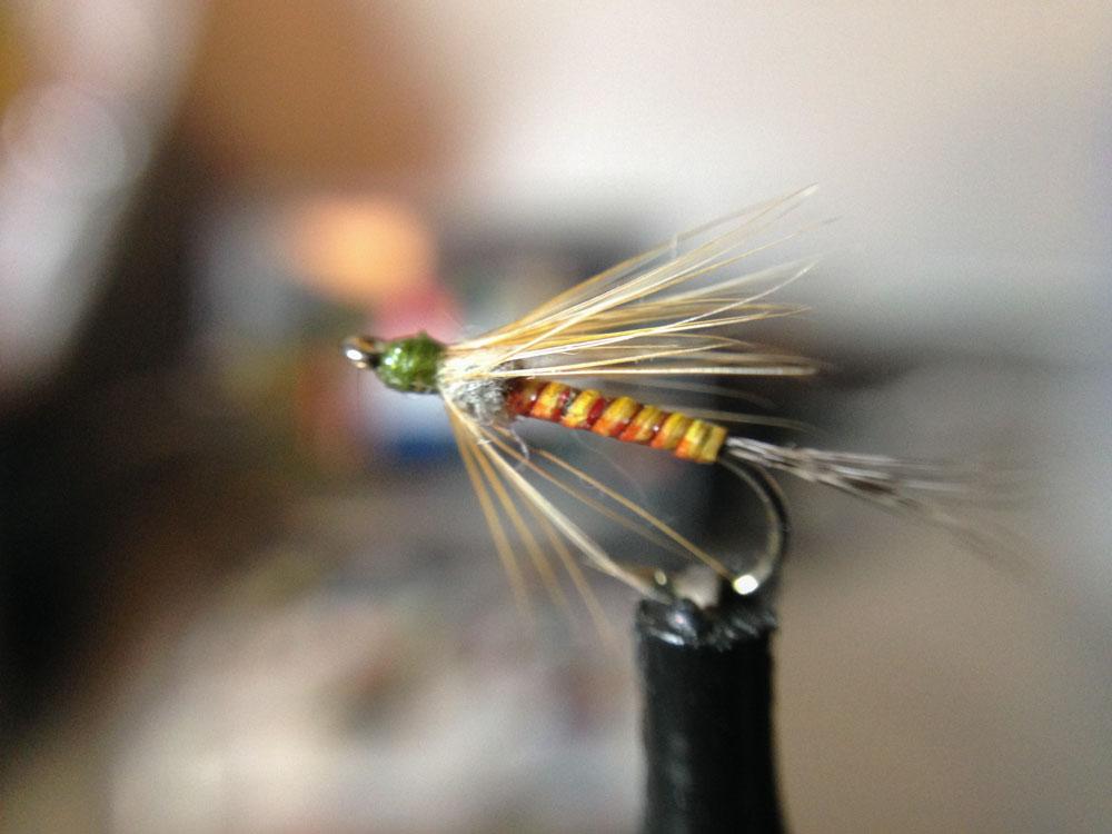 Bud's fly 2-3.jpg