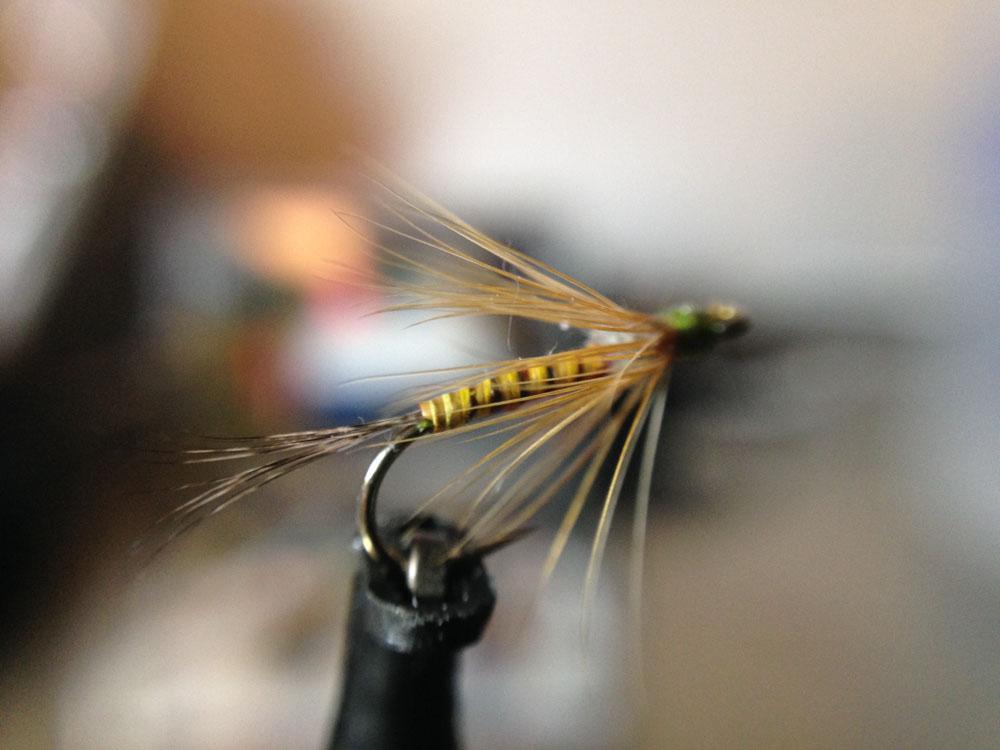 Bud's fly 2-9.jpg