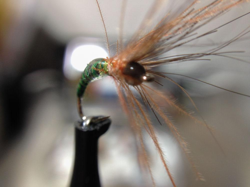 Bud's fly 3-1.jpg
