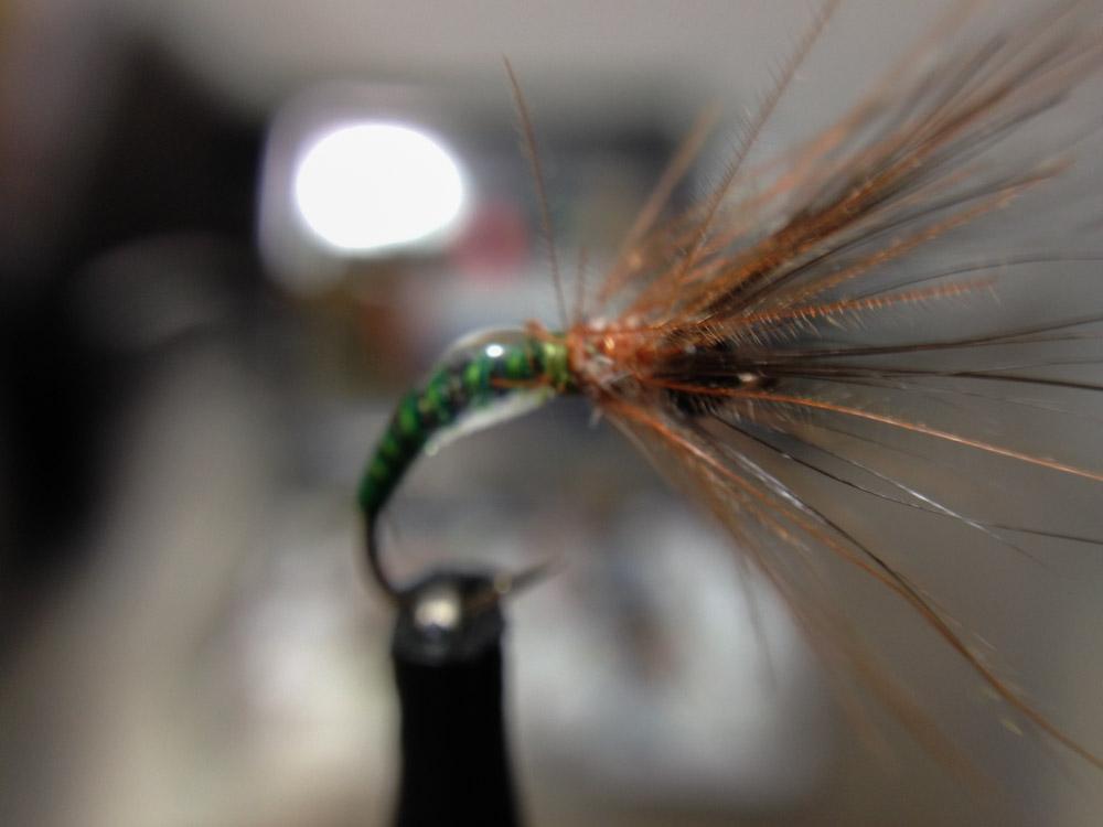 Bud's fly 3-8.jpg