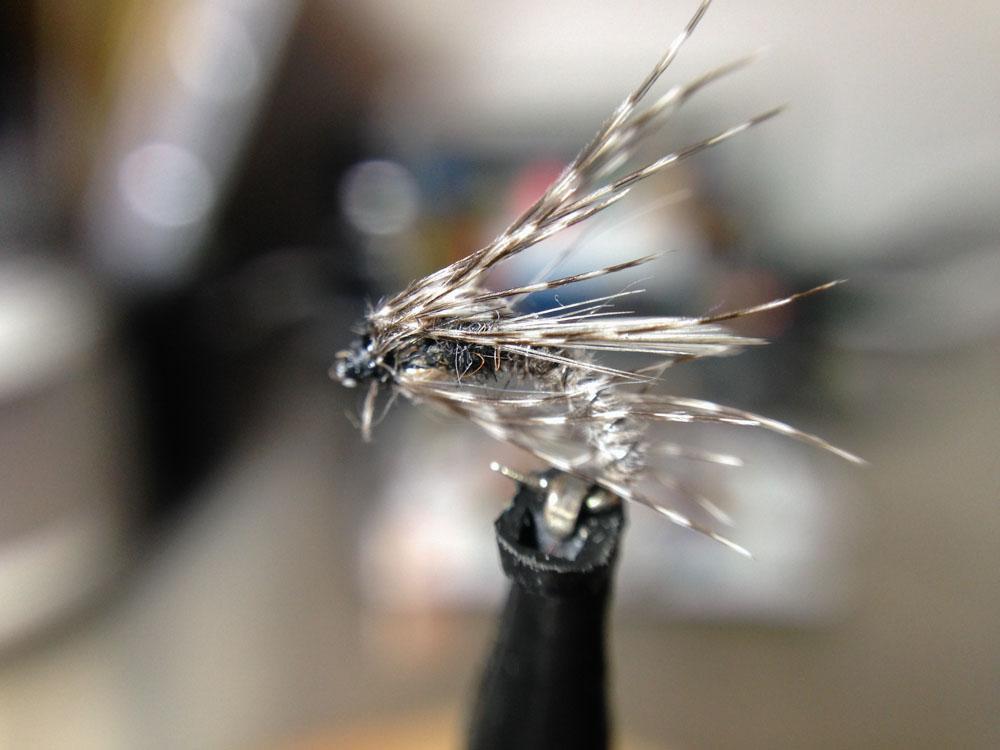 Bud's fly 4-2.jpg