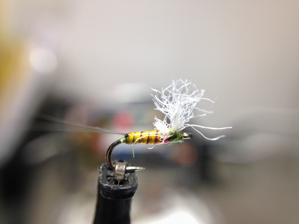 Bud's fly 5-9.jpg