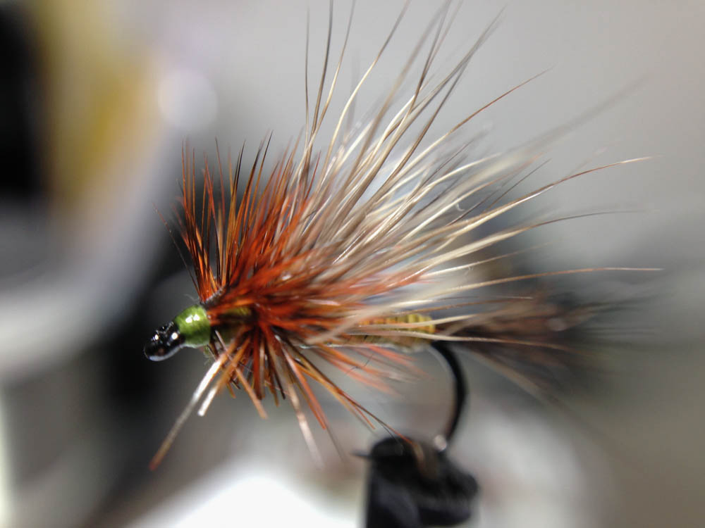 Bud's fly 7-2.jpg