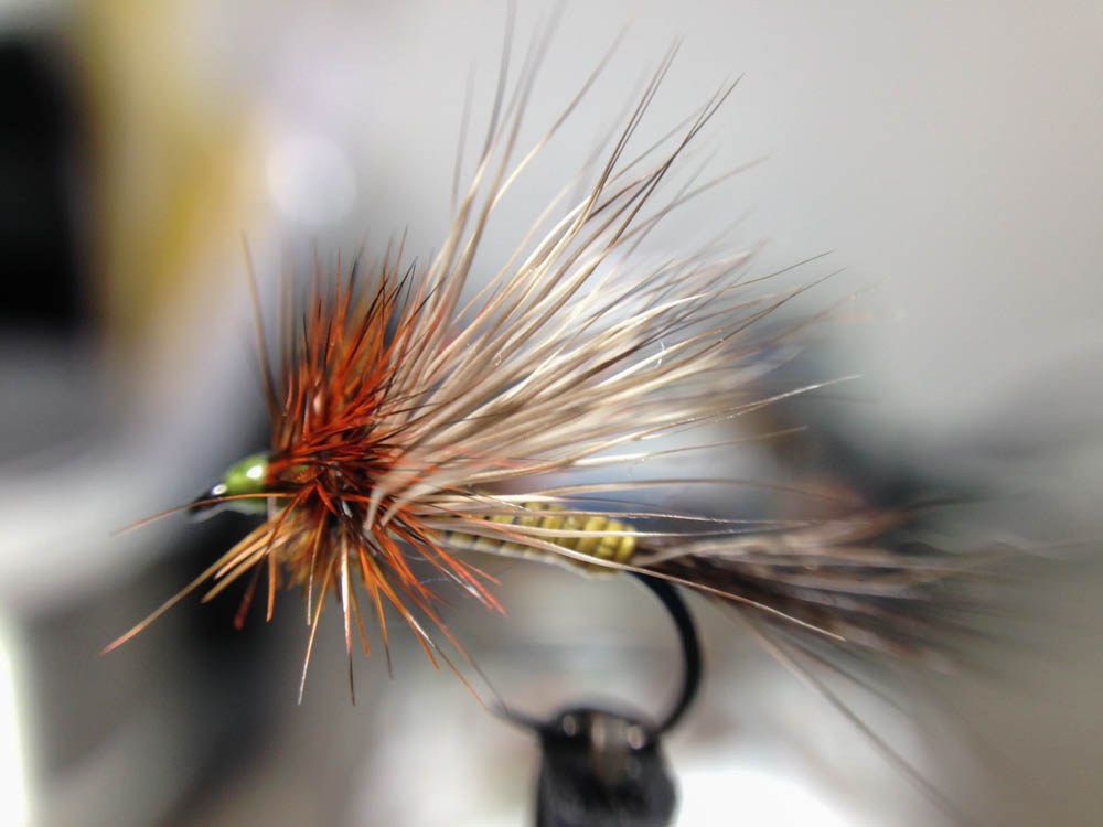 Bud's fly 7-4.jpg