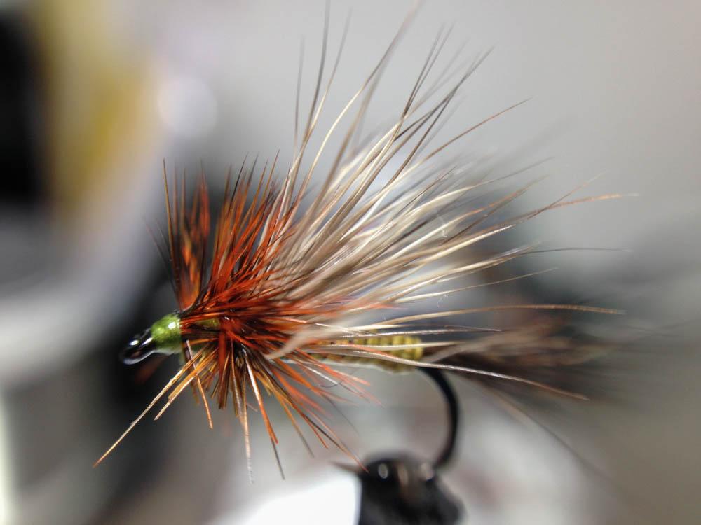 Bud's fly 7-3.jpg