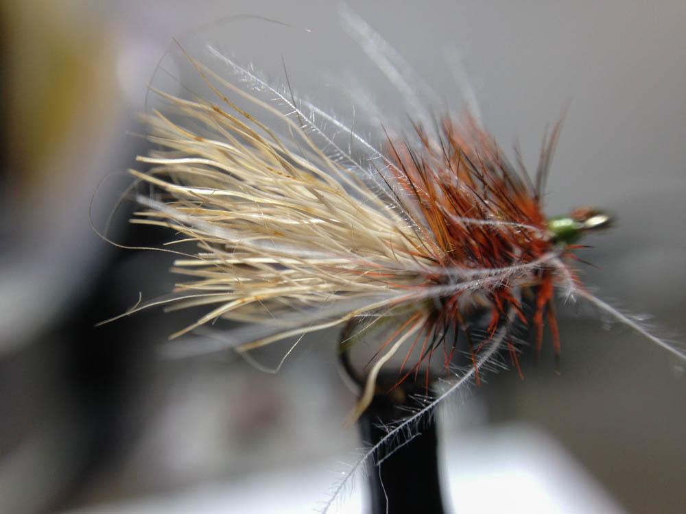 Bud's fly 7-41.jpg