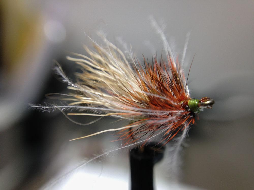 Bud's fly 7-43.jpg