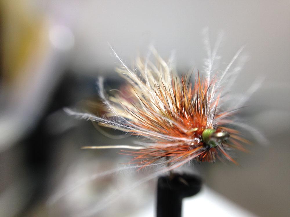 Bud's fly 7-44.jpg