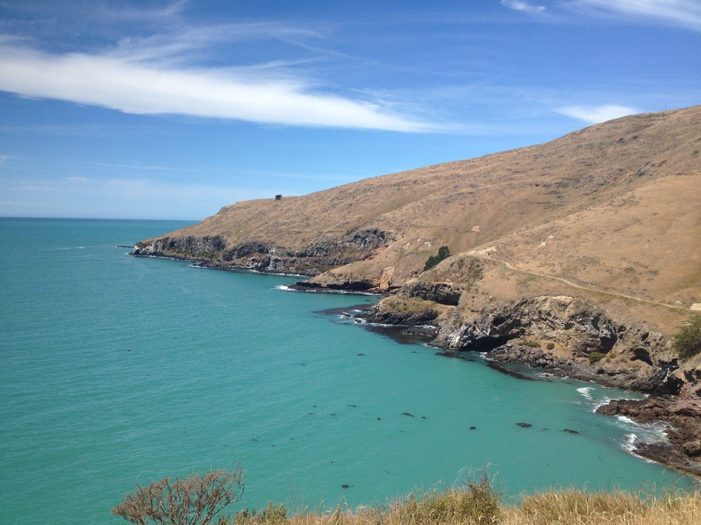 Boulder Bay Walk, Christchurch, NZ photo by Sunstone
