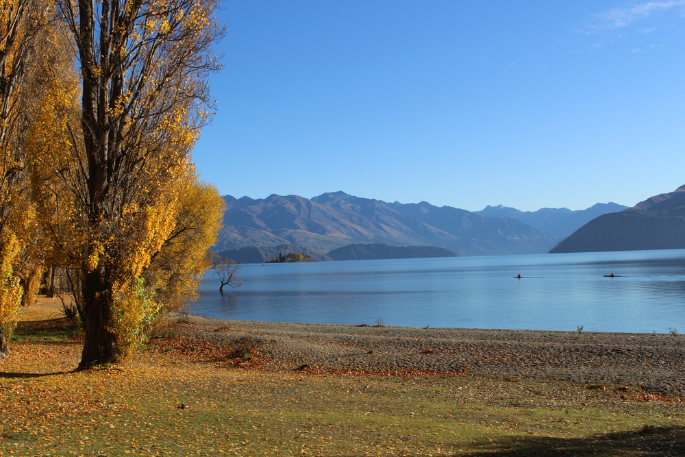 Beautiful autumn day with Kayakers heading out on a mission, Lake Wanaka, NZ