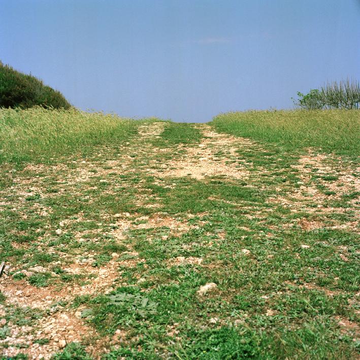 Road to Orte #2, Salento, Apulia