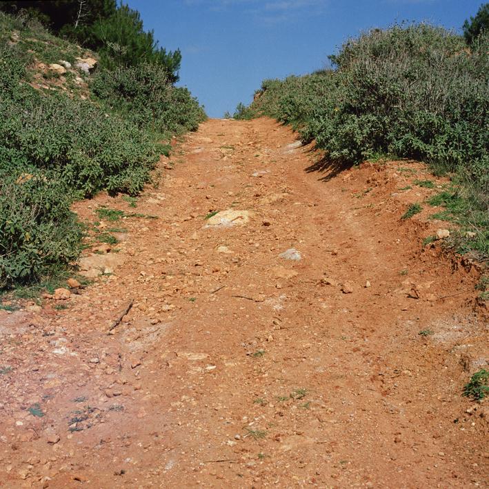 Road to Otanto, Salento, Apulia